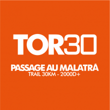 logo tor30